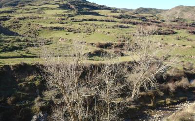 Empieza MIDMACC, un proyecto europeo para revitalizar las zonas de montaña y hacerlas más resistentes al cambio climático