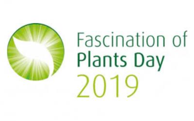 Día Internacional de la Fascinación por las plantas