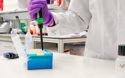 Una nueva infraestructura europea facilitará la transferencia de nanofármacos del laboratorio a la práctica clínica