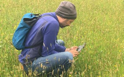 El Instituto Pirenaico de Ecología se adhiere a dos aplicaciones de móvil para catalogar las más de 3.500 plantas que habitan en el Pirineo aragonés